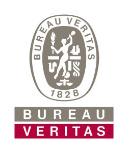 bv_logo_0